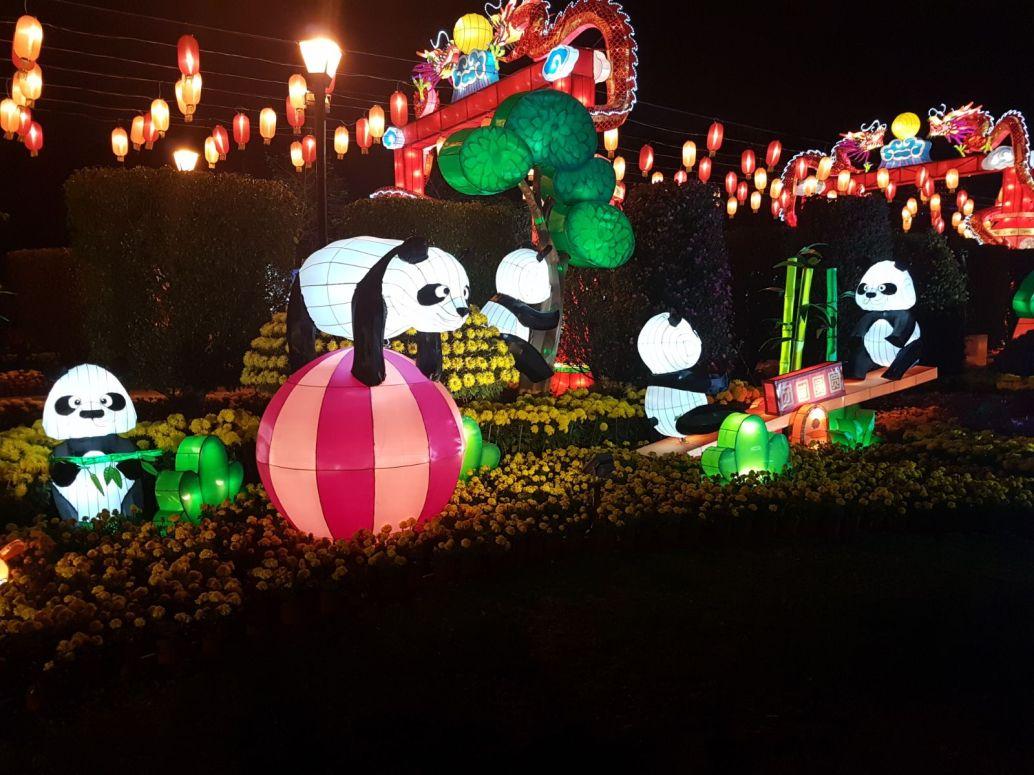 Panda Lanterns.jpeg